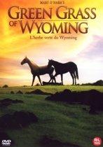 Dvd Green Grass Of Wyoming (Flicka)