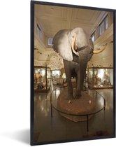 Foto in lijst - Grote olifant in het Natural History Museum in Londen fotolijst zwart 40x60 cm - Poster in lijst (Wanddecoratie woonkamer / slaapkamer)