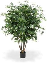 Acer Maple deluxe 165cm groen