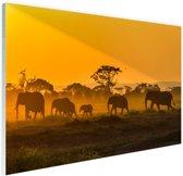 Kudde olifanten bij zonsopkomst Glas 90x60 cm - Foto print op Glas (Plexiglas wanddecoratie)