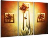 Glasschilderij Bloem | Geel, Bruin, Wit | 120x80cm 3Luik | Foto print op Glas |  F004131