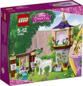 LEGO Disney Princess Rapunzels Perfecte Dag - 41065