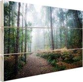 Een mistig pad door het bos Hout 30x20 cm - klein - Foto print op Hout (Wanddecoratie)