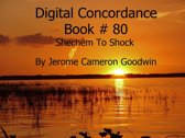 Shechem To Shock - Digital Concordance Book 80