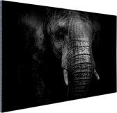 Gebarsten Olifant Aluminium 90x60 cm - Foto print op Aluminium (metaal wanddecoratie)