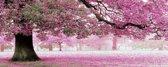 Diamond painting pakket - Rose bloesembomen 100X40