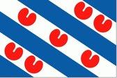 Friese vlag 20x30cm