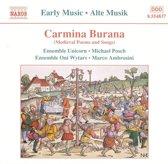 M. Ensemble Oni Wytars / Ambrosini - Carmina Burana