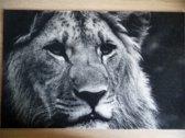 Deurmat 40x60 Leeuw Black&White