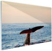 Walvisstaart uit het water Glas 90x60 cm - Foto print op Glas (Plexiglas wanddecoratie)