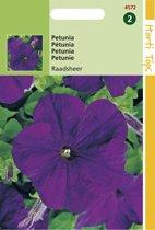 Hortitops Zaden - Petunia Raadsheer