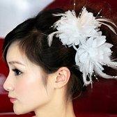 Prachtige Witte Bloem voor in je Haar