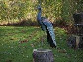 Tuinbeeld groot - Metalen beeld - Pauw - Bronzartes - 95 cm hoog