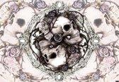 Fotobehang Skull Alchemy Roses | PANORAMIC - 250cm x 104cm | 130g/m2 Vlies