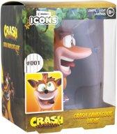 Crash Bandicoot - Crash Bandicoot Icon Light MERCHANDISE