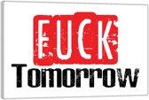 Plexiglas – Tekst: 'Fuck tomorrow'– 90x60cm (Wanddecoratie op Plexiglas)