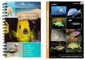 Duikgids Curaçao + fish id kaart