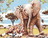 Schilderen op nummer dieren 40 x 50 cm