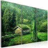 Schilderij - Bos ecosysteem, groen, 3luik, 2 maten