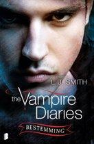 The Vampire Diaries 10 - Bestemming