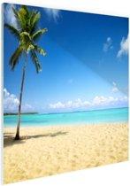 Een kokospalm bij de zee Glas 30x20 cm - klein - Foto print op Glas (Plexiglas wanddecoratie)