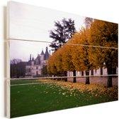 Gele bladeren in de herfst bij het Kasteel van Chenonceau Vurenhout met planken 60x40 cm - Foto print op Hout (Wanddecoratie)