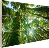 Tropische jungle in Azie Hout 160x120 cm - Foto print op Hout (Wanddecoratie) XXL / Groot formaat!