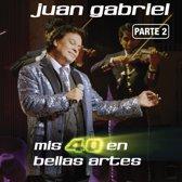 Mis 40 en Bellas Artes: En Vivo Desde Bellas Artes, México 2013, Vol. 2