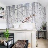 Fotobehang Berkenbos 384-260 cm - hoge kwaliteit vliesbehang