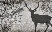 Fotobehang Hert, Modern | Grijs | 416x254