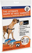 The Happy At Heel Harness, 44-54cm (S)