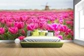 Roze tulpen en windmolen Fotobehang 380x265