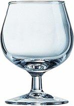 Cognacglas Arcoroc Degustation 15 cl - 12 stuks