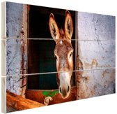Ezel in de stal Hout 60x40 cm - Foto print op Hout (Wanddecoratie)
