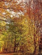 Autumn Notebook