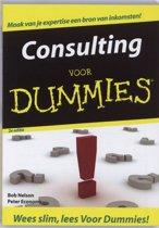 Voor Dummies - Consulting voor Dummies
