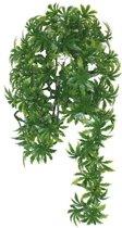 Komodo Papaya Leaf Vine - 45 cm