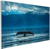 Staart van een grote bultrug walvis Glas 180x120 cm - Foto print op Glas (Plexiglas wanddecoratie) XXL / Groot formaat!