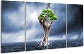 Glasschilderij Modern | Grijs, Groen | 160x80cm 4Luik | Foto print op Glas |  F006172