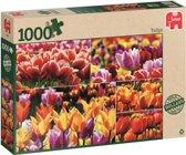 Holland Tulips - Puzzel 1000 stukjes