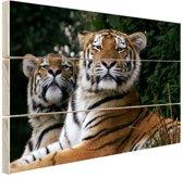 Twee Siberische tijgers Hout 80x60 cm - Foto print op Hout (Wanddecoratie)