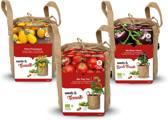 Stadstuintjes tomaten kweken – set 3st.
