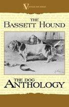 The Basset Hound - A Dog Anthology (A Vintage Dog Books Breed Classic)