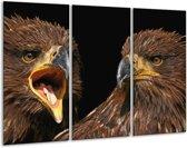 Canvas schilderij Vogels | Geel, Bruin, Zwart | 120x80cm 3Luik
