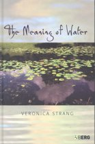 The Meaning of Water