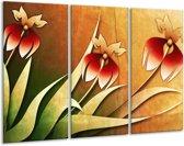 Glasschilderij Bloem | Rood, Geel, Groen | 120x80cm 3Luik | Foto print op Glas |  F004130
