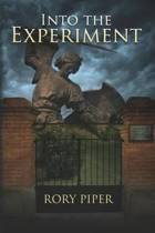 Into the Experiment
