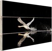 Vliegende zwaan Hout 80x60 cm - Foto print op Hout (Wanddecoratie)