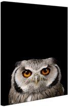 FotoCadeau.nl - Portret uil Canvas 60x80 cm - Foto print op Canvas schilderij (Wanddecoratie)