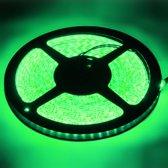 Epoxy Waterproof Rope Light, Lengte: 5 m, Groen Licht 3528 SMD LED, 120 LED / m